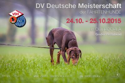 Dobermann verein deutsche meisterschaft